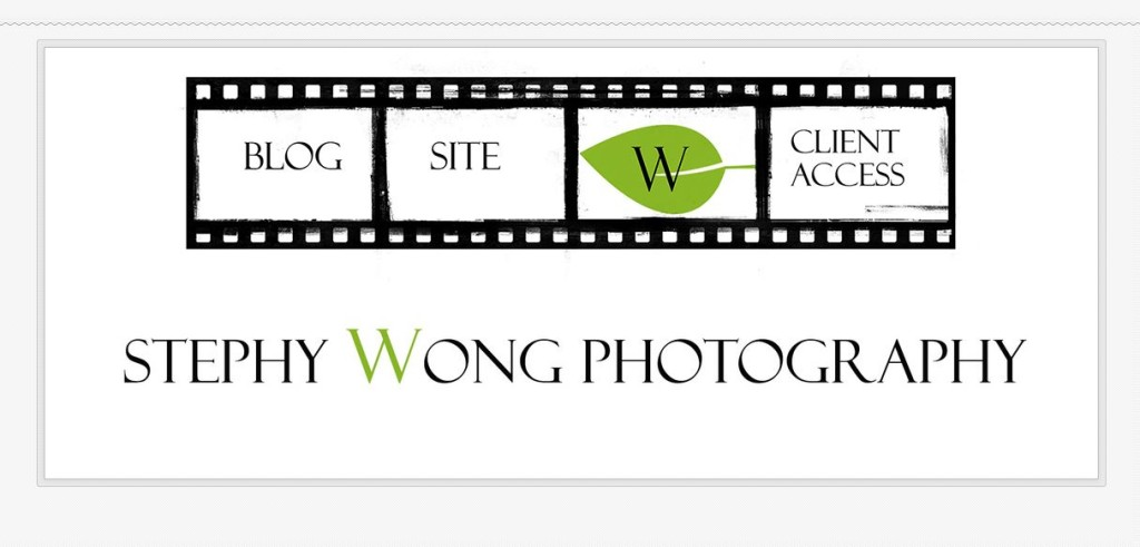 stephwong site cover