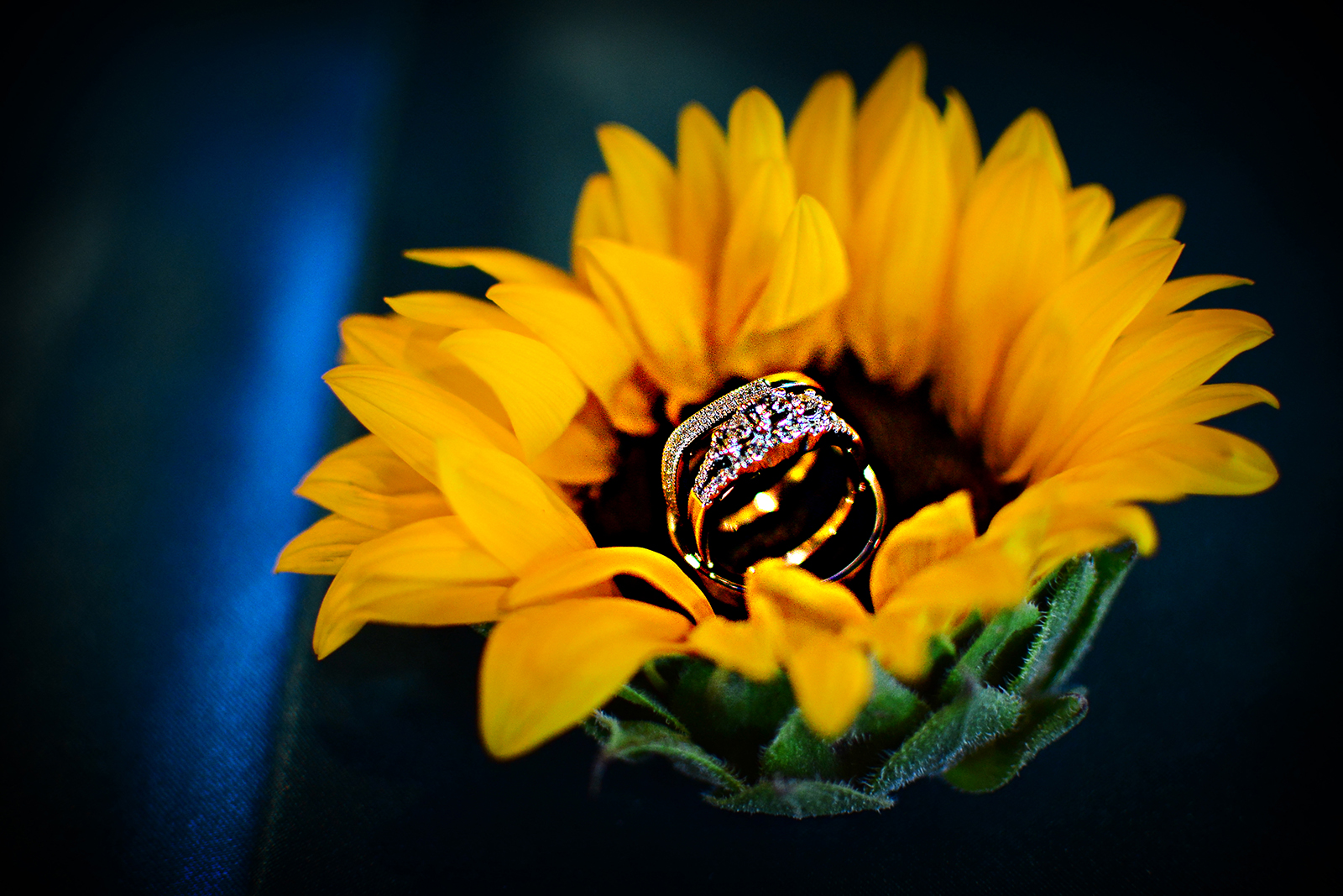 cake, wedding cake, stephy wong photography, wedding details, ring shot, sunflowers wedding